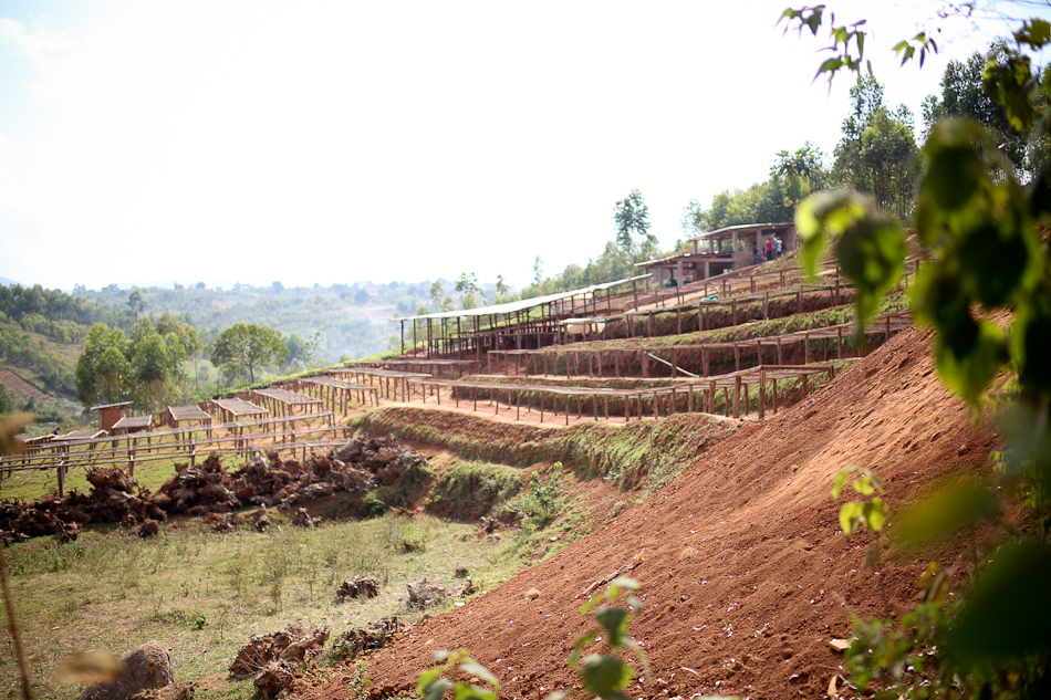 Burundi coffee, Burundi coffee farmers, coffee farms, Burundi coffee washing station, coffee washing station, long miles coffee project