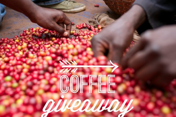 Burundi Coffee Giveaway + Harvest Update